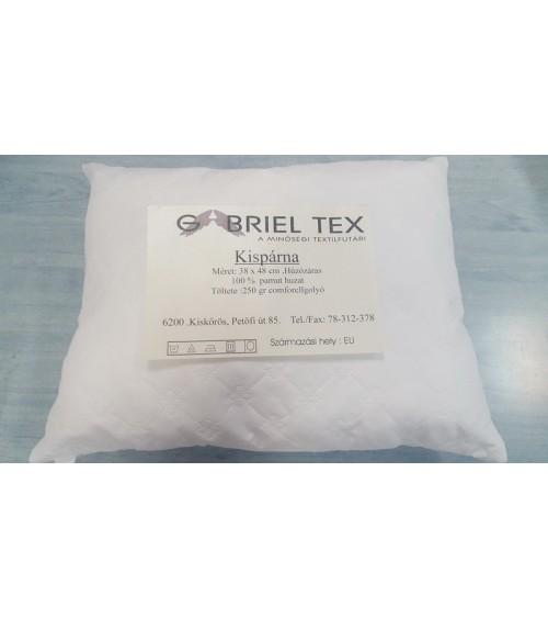 Gabriel Texl small pillow